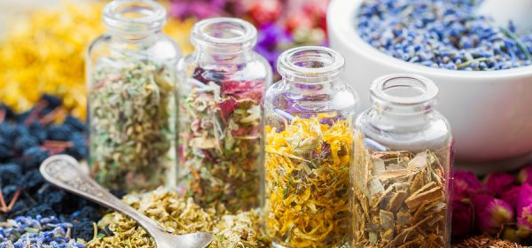 Information about Powerful Healing Herbs